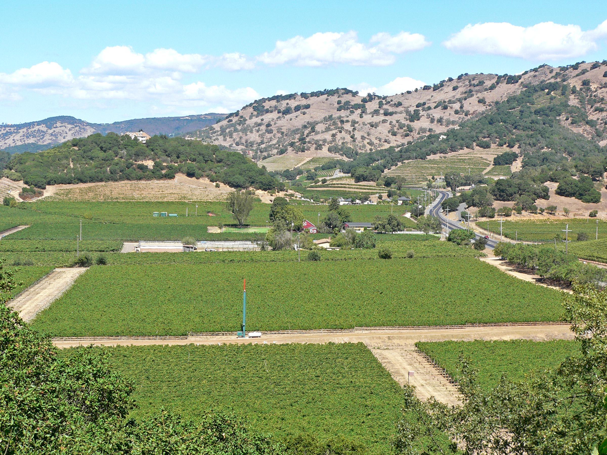 Napa_Valley_Silverado_Trail